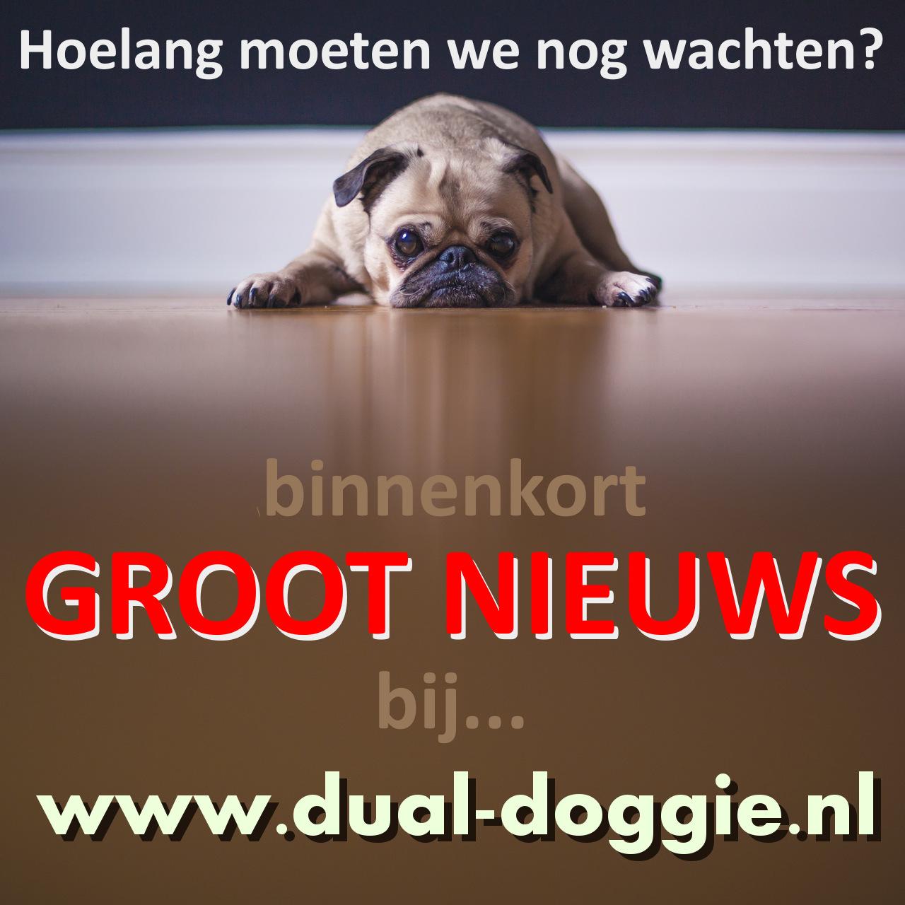 Binnenkort is de dual-doggie te koop bij www.dual-doggie.nl